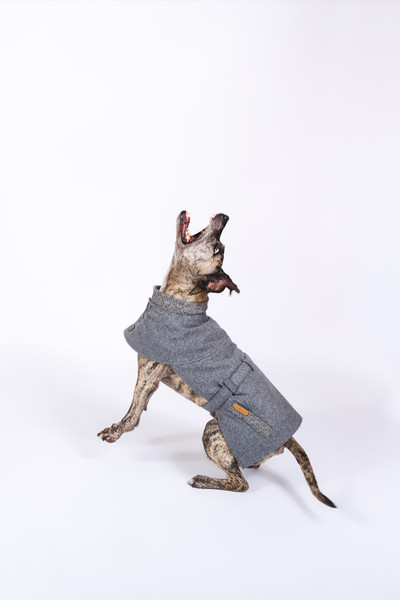 happystaffy.me – Hundemode mit Herz <3